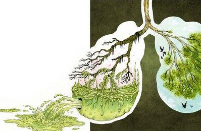 Детоксикация организма в домашних условиях. Фото