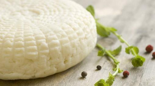 Панир - домашний сыр из молока. Фото