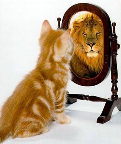 Что такое эго человека? Многие считают, что эго – это представление их ума о самом себе. Но это является ложным эго. Поскольку эго – это само бесконечное сознание, пожелавшее стать отделённым. Древние мудрецы назвали такую отделённость «психе» («psyche») или «душа». Станислав Милевич