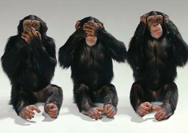 Формирование социальных норм поведения. Фото