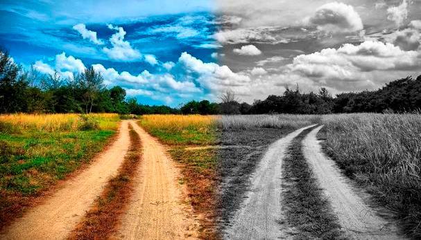 Если произошло несчастье, следует отодвинуть его в сторону и жить дальше. Неизбежное невозможно изменить, его можно только принять. Станислав Милевич