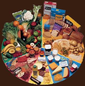 Cуществуют различные типы питания: общественное питание, сбалансирование питание (диеты), вегетарианство, сыроедение, питание праной (солнцеедение). Станислав Милевич