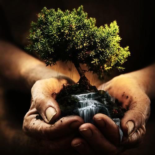 Идея о том, что Земля может принадлежать человеку, - это иллюзия. Человеку ничто не может принадлежать. Он только может принимать в дар и пользовать тем, что даёт ему Земля.